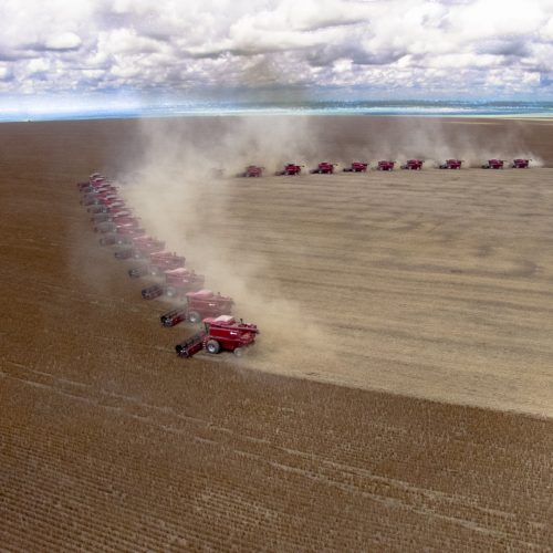 Mato Grosso, Brazil, mass soybean harvesting at a farm in Campo Verde / Photo credits: alfribeiro / 2008 / Source: depositphotos.com, ©2019